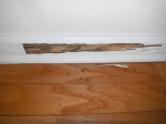 termite-damage-to-baseboards-7-year-old-house
