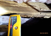 advanced-dry-rot-and-high-moisture-levels-under-the-1980s-home